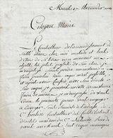 1802 - LE MANS - BRULON - Le Contrôleur De L'arrond. De SABLE Malade, Demande MATRICE Contributions PORTES & FENETRES - Documents Historiques