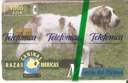 B-083 TARJETA RAZAS CANINAS DEL MASTIN DE 1000 PTAS (PERRO-CAN-DOG)  50% NUEVA-MINT EN BLISTER - Espagne