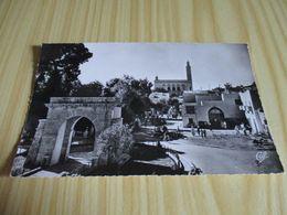 CPSM Laghouat (Algérie).Le Monument Aux Morts Et La Mosquée. - Laghouat