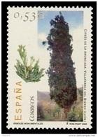 ESPAÑA 2006 - ARBOLES MONUMENTALES.- Ciprés De La Anunciada - EDIFIL Nº 4221 - Yvert 3808 - 1931-Heute: 2. Rep. - ... Juan Carlos I