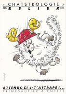 Lot 12 Cartes Signes Astrologiques Chatstrologie Illustrateur Daniel Menneboeuf 1989 Chats - Astrology