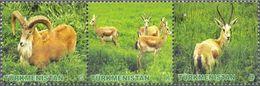 Turkmenistan 2009, Fauna, MNH Stamps Stripe - Turkmenistan