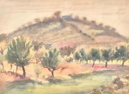 Jelzés Nélkül: Gyümölcsfák. Akvarell, Papír, üveg Mögött, 20,5x29,5 Cm - Unclassified