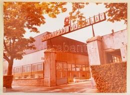 1991 A Gyufaipari Vállalat üzeme 16 Fotót Tartalmazó Album. Fotók Mérete 24x16 Cm - Other Collections