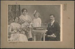 1914 Családi Fotó, Harkányi Műterméből (Fehértemplom), Feliratozott, 13,5x20 Cm - Other Collections