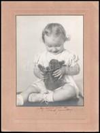 1942 Kislány Mackóval, Fotó Kartonra Ragasztva, Szakadással, 21x15,5 Cm - Other Collections