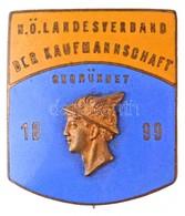 """Ausztria ~1920-1930. """"Alsó-Ausztriai Tartományi Kereskedelmi Szövetség 1899"""" Aranyozott, Zománcozott Br Jelvény """"BORTH W - Coins & Banknotes"""