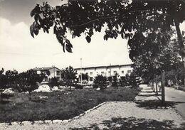 PROSECCO-PROSEK-TRIESTE-BORGO SAN NAZARIO-CARTOLINA VERA FOTOGRAFIA- VIAGGIATA IL 3-10-1963 - Trieste (Triest)