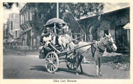 Inde - Benares - Ekka Cart - India