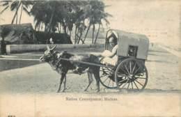 Inde - Madras - Native Conveyance , Madras - India