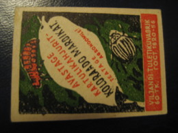 COLORADO POTATO BEETLE Doryphore Epinotarsa Decemlinrata Poster Stamp Vignette ESTONIA Label Insect Insects - Other