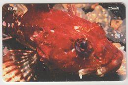 ISLE OF MAN - Scorpion Fish , Tirage 20.000, Used - Man (Isle Of)