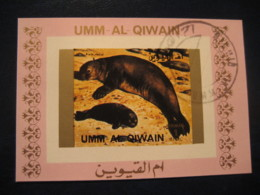 SEAL Phoque Imperforated Bloc UMM-AL-QIWAIN Umm Al Quwain United Arab Emirates UAE Marine Mammal Mammals - Mammifères Marins