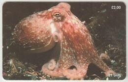 ISLE OF MAN - Curled Octopus , Tirage 20.000, Used - Man (Isle Of)