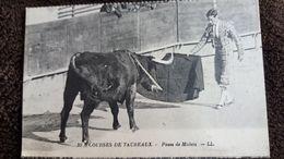 CPA COURSES DE TAUREAUX PASSE DE MULETA 39 LL ED LEVY - Toros