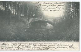 Domaine De Fayenbois, Bois De Breux-Liège. - Le Pont Du Diable - Etabl's Des Arts Graphiques, Herstal - Beyne-Heusay