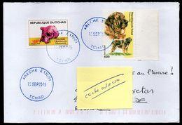 TCHAD Enveloppe Cover Oblitération Abéché 08 11 2018 Toumaï Et Chien - Tchad (1960-...)