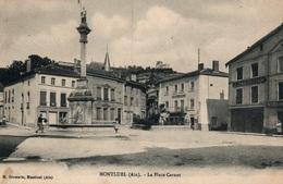 Montluel (Ain) La Place Carnot, Fontaine - Edition M. Brossette - Montluel