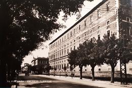 Cartolina - Piacenza - Palazzo Farnese - 1960 Ca. - Piacenza