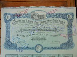EGYPTE - ALEXANDRIE 1905 - THE EGYPTIAN LAND INVESTLENT CIE - ACTION DE 5 LIVRES EGYPTIENNES - Actions & Titres