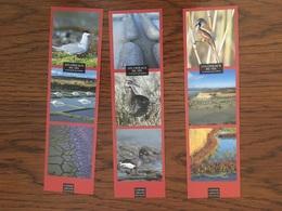 Marque Page Ed Coiffard X3 Les Oiseaux Du Sel - Marque-Pages
