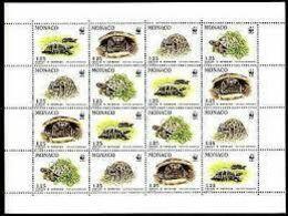 1805-1808 - Protection De La Nature - Espèce Protègée - La Tortue D'Hermann - Feuille De 16 Timbres (4x4) - Monaco