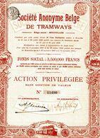 S.A. Belge De TRAMWAYS - Chemin De Fer & Tramway