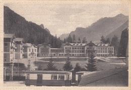 Trentino  - Bolzano  - Dobbiaco - Colonia Alpoina Bologna  - F. Grande - Viagg. - Anni50 - Bella Con Treno - Italie