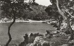 SAINT-CYR-SUR-MER LES LECQUES Calanque Du Port D'Avon  Années 50 - Saint-Cyr-sur-Mer