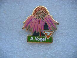 Pin's Fleur Fanée. A.VOGEL - Pins