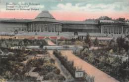 BRUXELLES - Jardin Botanique - Foreste, Parchi, Giardini