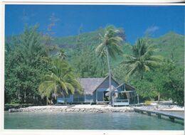 Tahiti - Maison De Vacances De Moorea - Tahiti