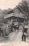 Retour Au Chalet - Valais - Animée - Troupeau De Vaches Hotte - VS Valais