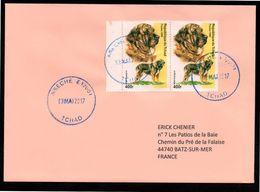 TCHAD Enveloppe Cover Oblitération Abéché 13 05 2017 - Tchad (1960-...)