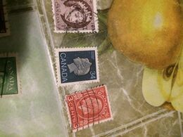 Canada Regina 1 VALORE ! - Stamps
