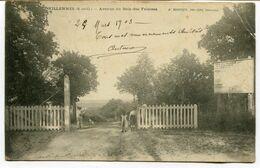CPA - Carte Postale - France - Villennes - Avenue Du Bois Des Falaises - 1903  (D13344) - Villennes-sur-Seine