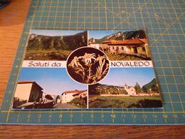 155417 Saluti Da Novaledo  Cartolina  Usata Per Concorso - Bolzano (Bozen)