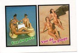 CPM   SEXY EROTIQUE       FEMMES SEINS NUS     VUE DU PORT     VUE DE LA PLAGE - Fine Nudes (adults < 1960)