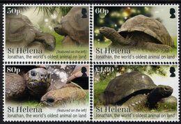 Saint Helena - 2019 - Turtle Jonathan - The World's Oldest Animal - Mint Stamp Set - St. Helena