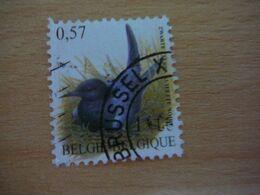 (01.08) BELGIE 2002 Nr 3136 Met Mooie Afstempeling BRUSSEL - 1985-.. Pájaros (Buzin)