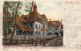 DC2773 - Darmstadt Gruss Von Dem Luftkurort Ludwigshöhe Litho - Darmstadt