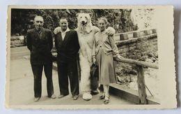 Carte Photo 3 Personnes Avec Une Personne Déguisée En Ours Blanc Alpes ? Pyrénées ? à Identifier - Postcards