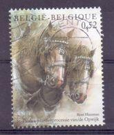 Belgie - 2002 - OBP  - 3086  - Sint Pauluspaardenprocessie Van Opwijk - Gestempeld - Used Stamps