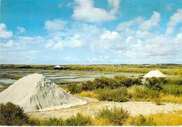 44 - Batz Sur Mer - Un Aspect Des Marais Salants - Saline Et Mulons De Sel - Batz-sur-Mer (Bourg De B.)