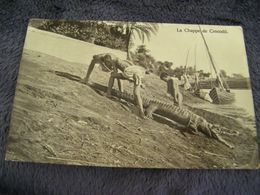 CPA - Afrique - Egypte - Chasse Chappe Au Crocodile - 1920 - SUP (DO 28) - Egypte