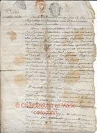 1798 ADMINISTRATEURS PYRENEES ORIENTALES ADJUDICATION DOMAINE NATIONAL A ST CYPRIEN POUR MARTIN SISTAC - Documents Historiques