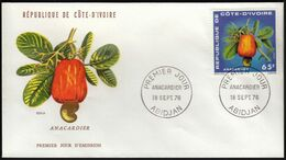 Ivory Coast 1976 / Cashew-nut, Anacardier / Mi 494 / FDC - Costa D'Avorio (1960-...)