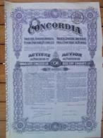 ROUMANIE - LOT DE 4 TITRES : BUCAREST 1920, 1921, 1922, 1924 - ROUMAINE POUR L'INDUSTRIE DU PETROLE - ACTION DE 250 LEI - Ohne Zuordnung