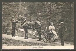 Carte P De 1908 ( Kandersteg /Gemmi-Wägeli ) - BE Berne