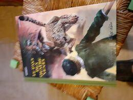 Herbert & Jadoul Le Pays Des Quatre Vents Ed Age D'or - Livres, BD, Revues